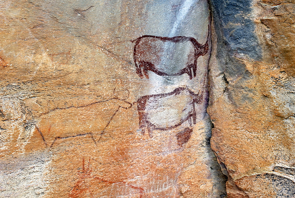 Rock paintings approx. 4000 years old, Tsodilo Hills, UNESCO World Heritage Site, Botswana, Africa