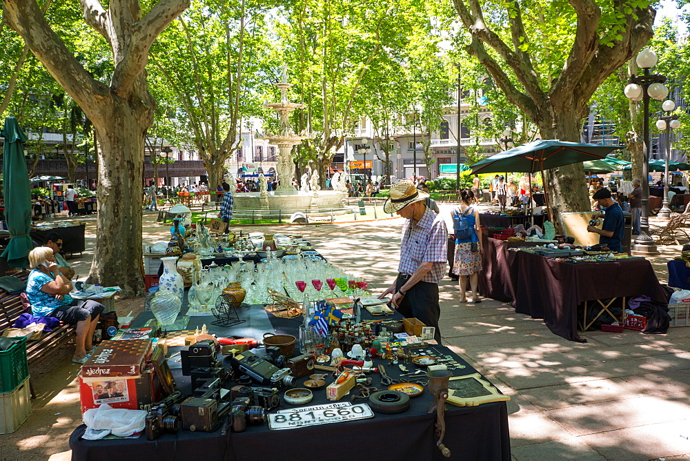 Antique market, Montevideo, Uruguay, South America - 483-1789