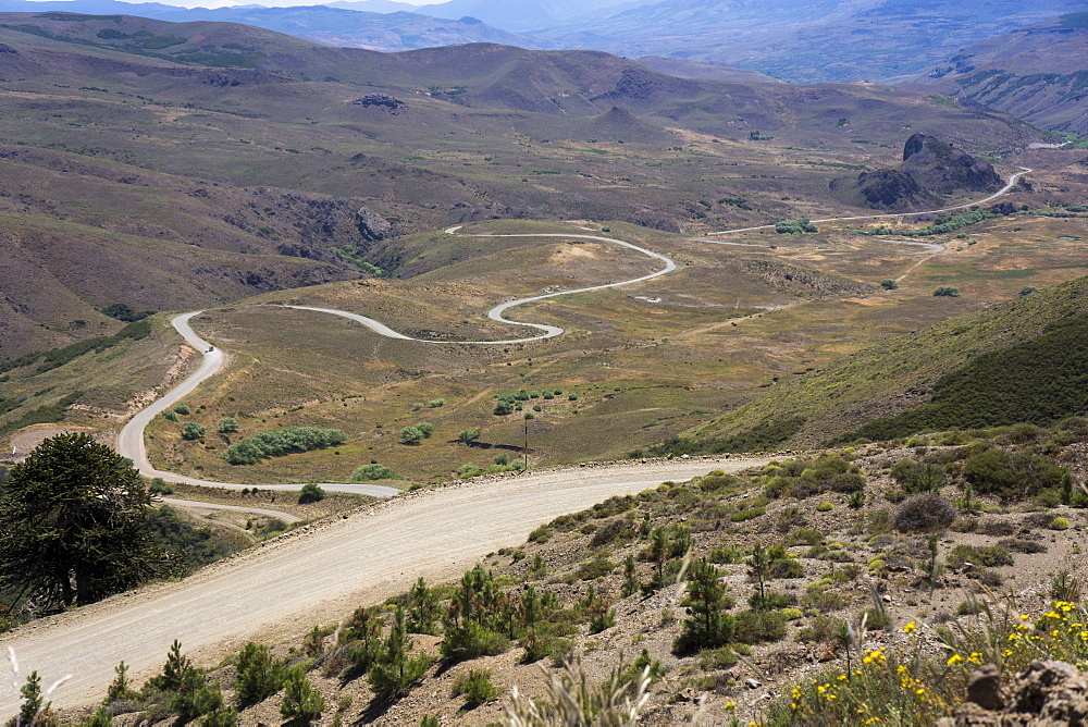 Winding road, foothills of the Andes, Argentina, South America