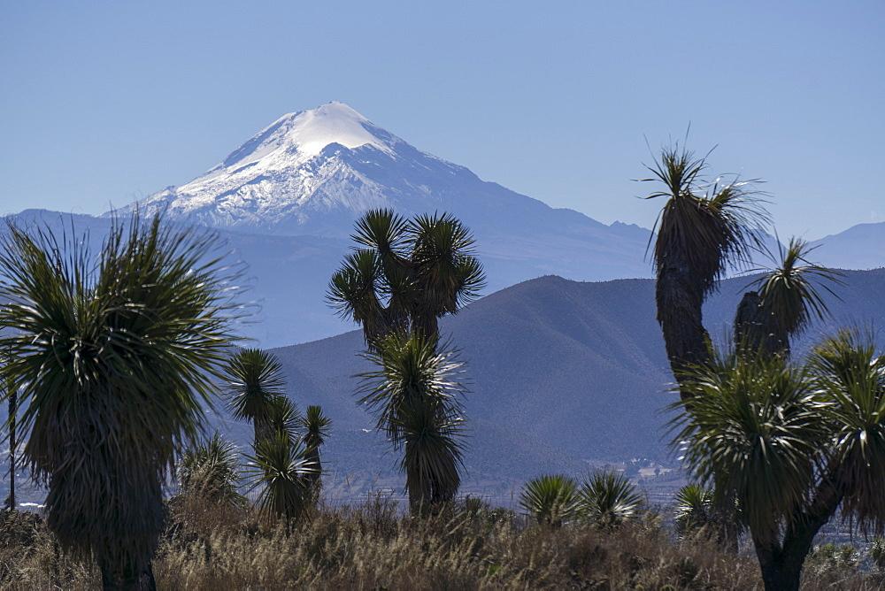 Pico de Orizaba, Mexico, North America - 483-2037