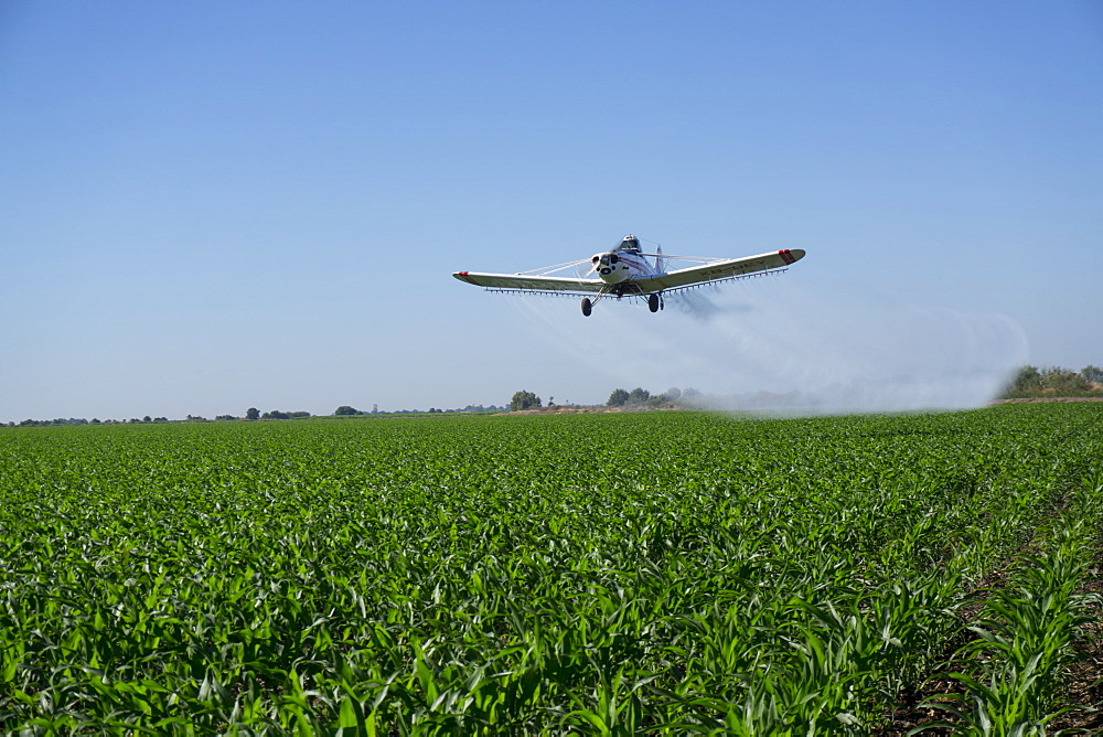 Large scale agriculture and crop spraying, Mexico, North America