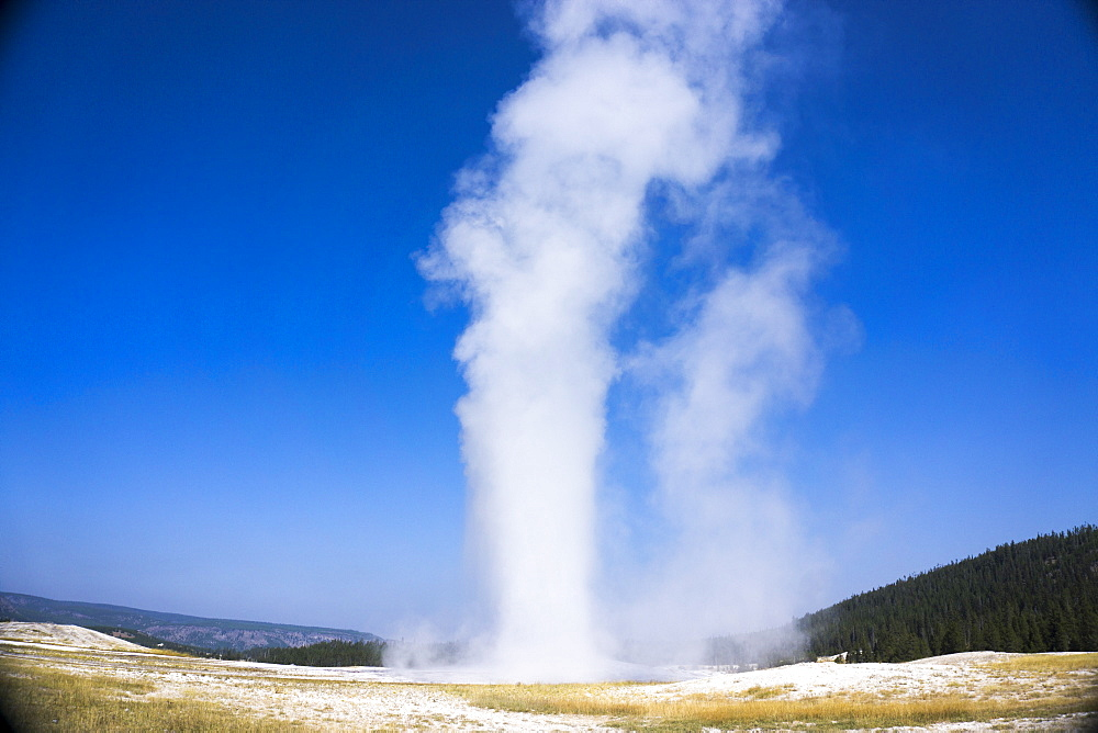 Old Faithful geyser blowing, Yellowstone National Park, UNESCO World Heritage Site, Wyoming, United States of America, North America - 483-2085