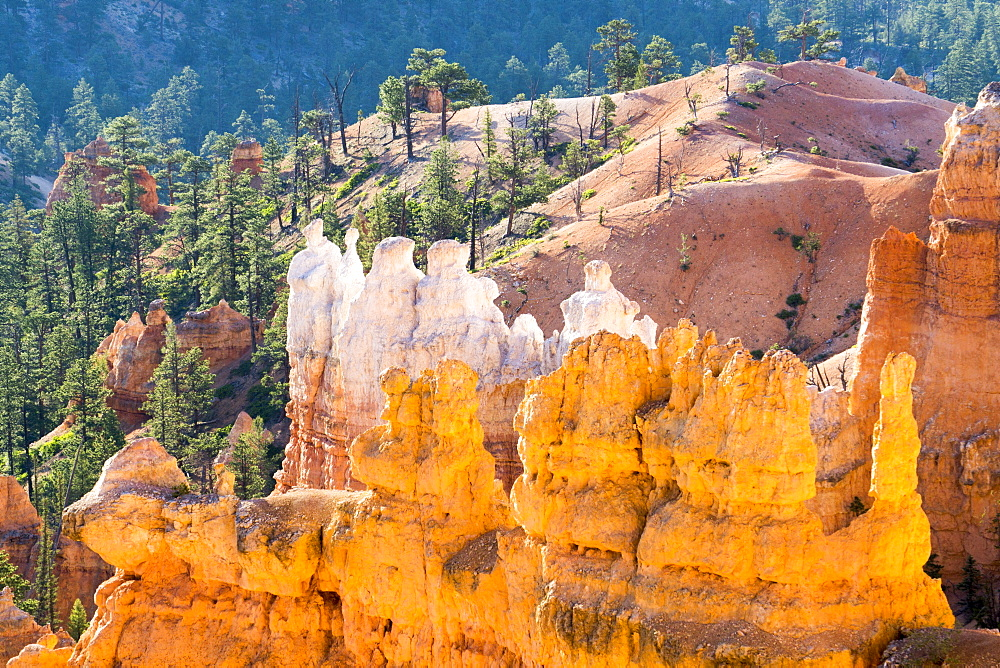 Sunrise View Piont, Bryce National Park, Utah, United States of America, North America - 483-2092