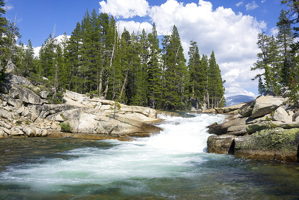 River Tuolumne adjacent to Yosemite National Park, California, United States of America, North America