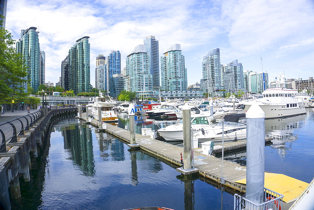 Vancouver Marina and city in the background, Vancouver, British Columbia, Canada, North America