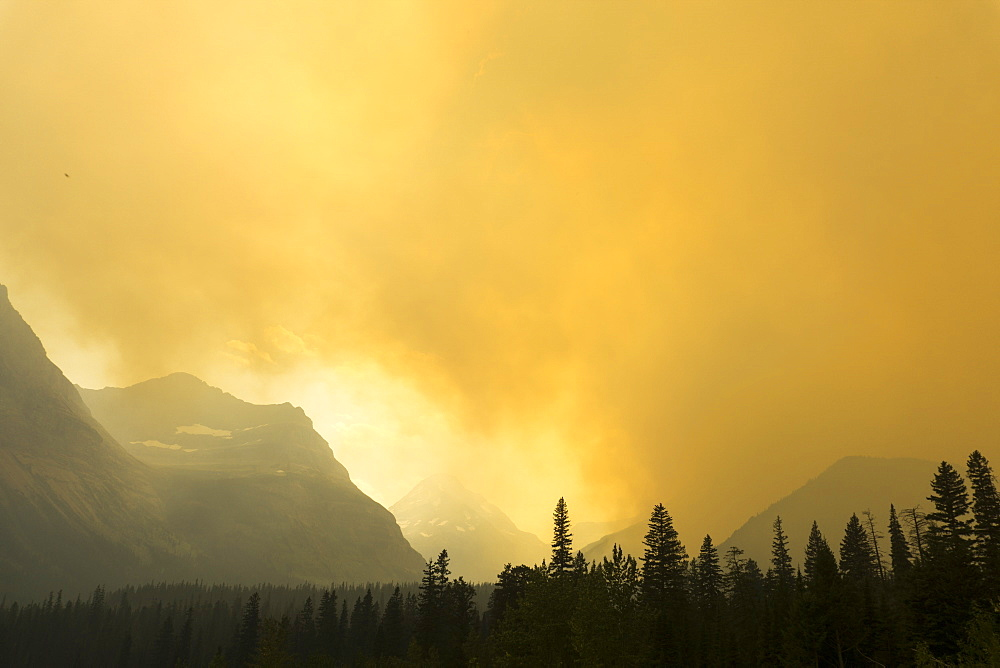 Forest fire, Glacier National Park, Montana, United States of America, North America