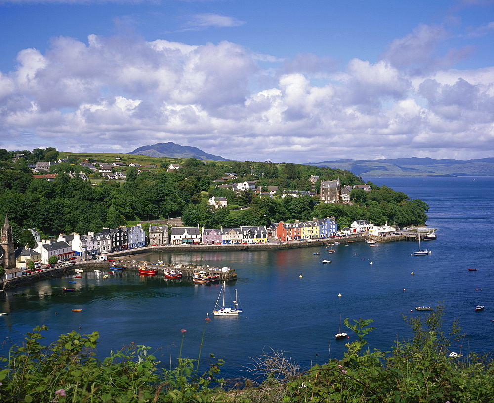 Tobermory, Ise of Mull, Strathclyde, Scotland, England *** Local Caption ***