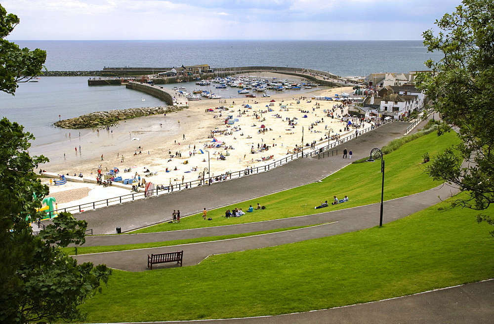 The Cobb and beach at Lyme Regis, Dorset, England, United Kingdom, Europe - 485-9643
