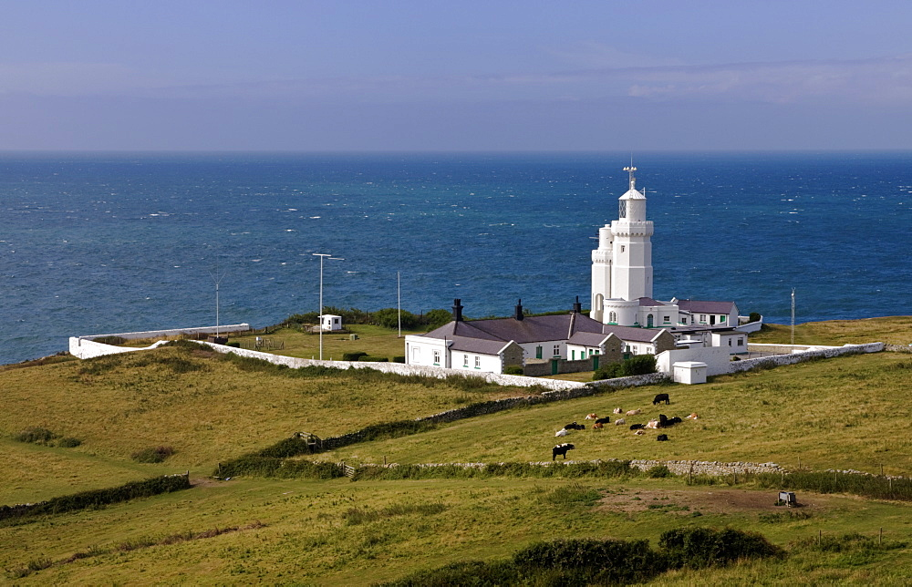 St. Catherine's Point Lighthouse, Isle of Wight, England, United Kingdom, Europe - 485-9646