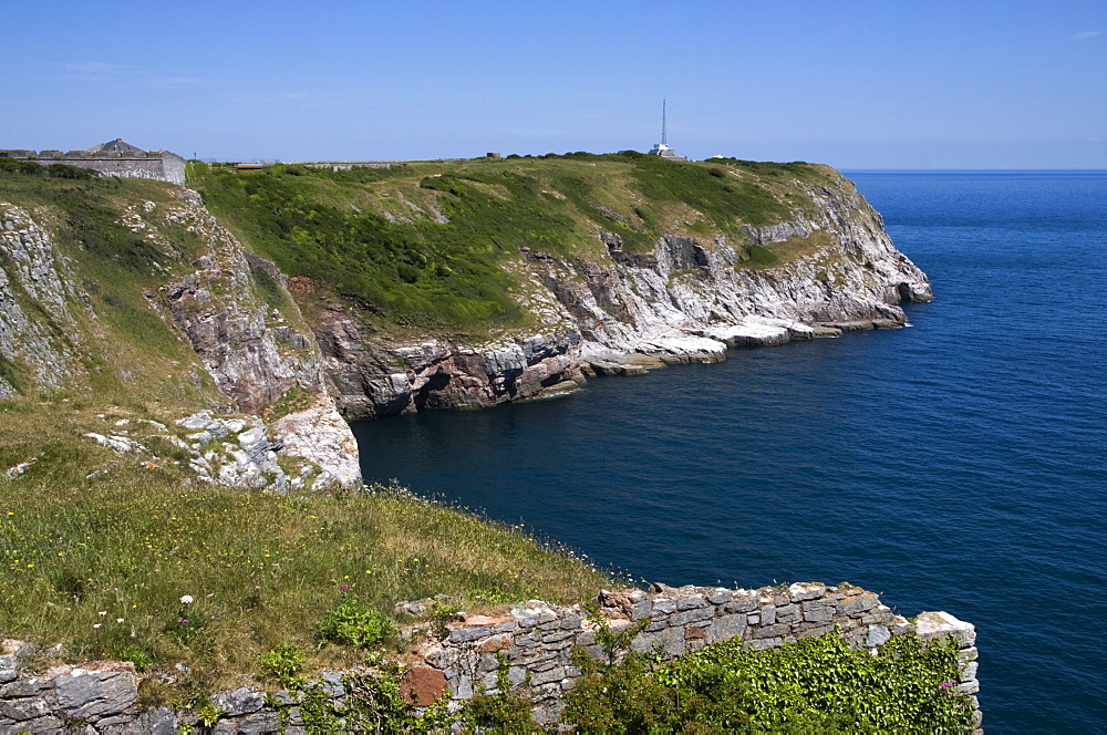 Berry Head, Brixham, Torbay, South Devon, England, United Kingdom, Europe - 485-9660