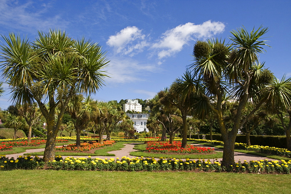 Gardens at Torquay, South Devon, England, United Kingdom, Europe - 485-9671