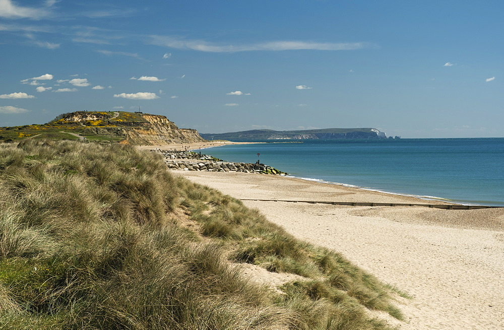 Hengistbury Head Cliffs and Beach, Bournemouth, Poole Bay, Dorset, England, United Kingdom, Europe - 485-9699