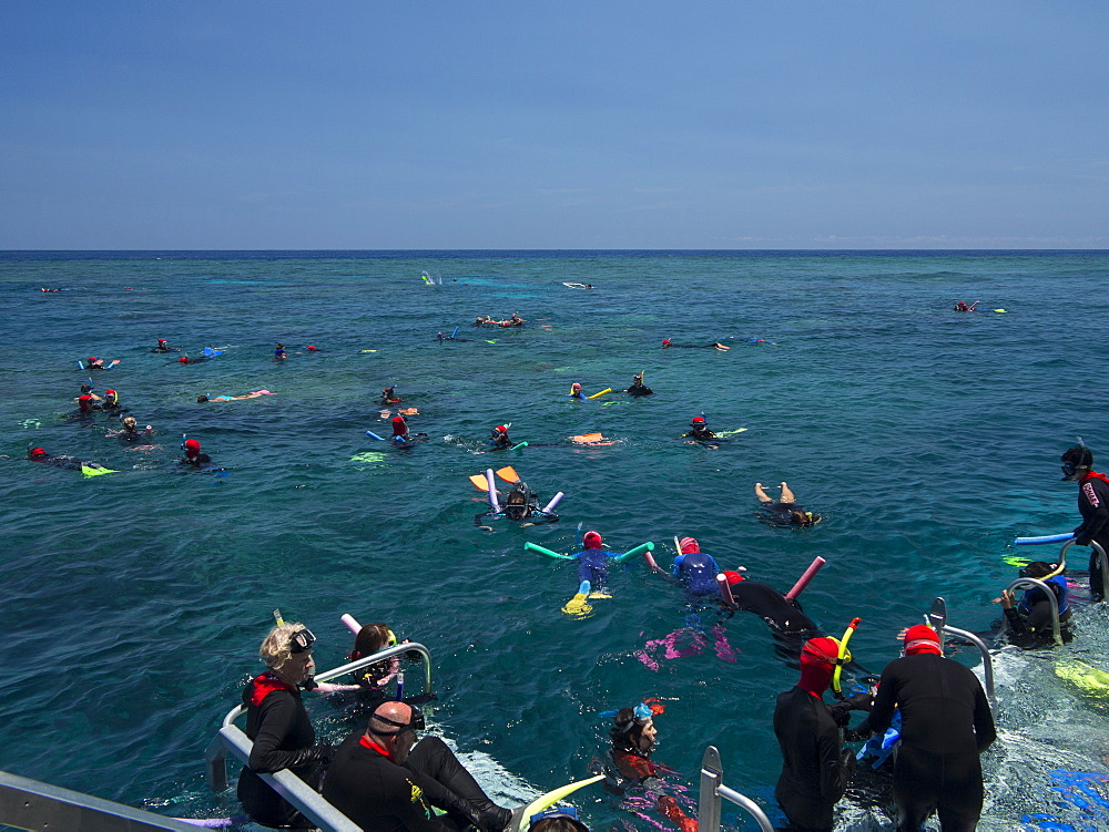 People snorkelling on Outer Great Barrier Reef near Cairns, North Queensland, Australia, Pacific