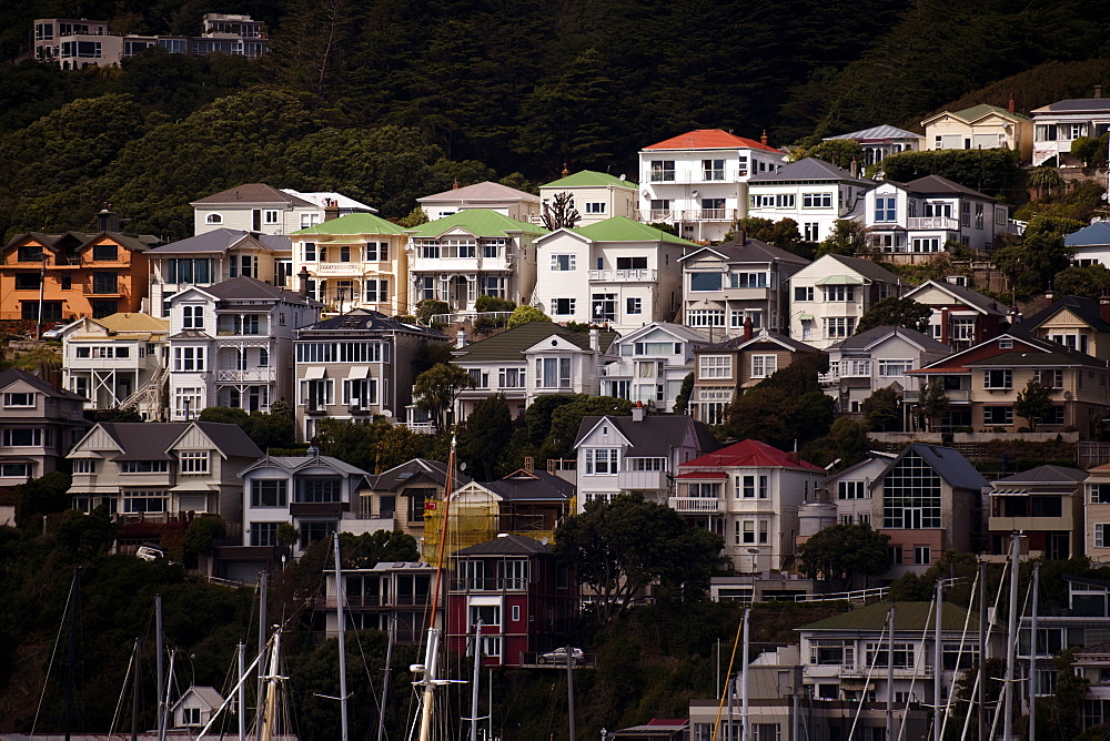 Houses on the northern slopes of Mount Victoria overlooking Oriental Bay, Wellington, North Island, New Zealand, Pacific