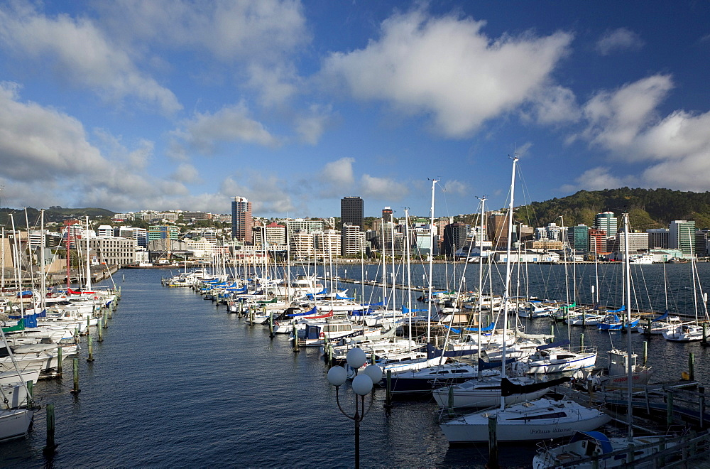 City centre and waterfront from Chaffers Marina, Wellington, North Island, New Zealand, Pacific