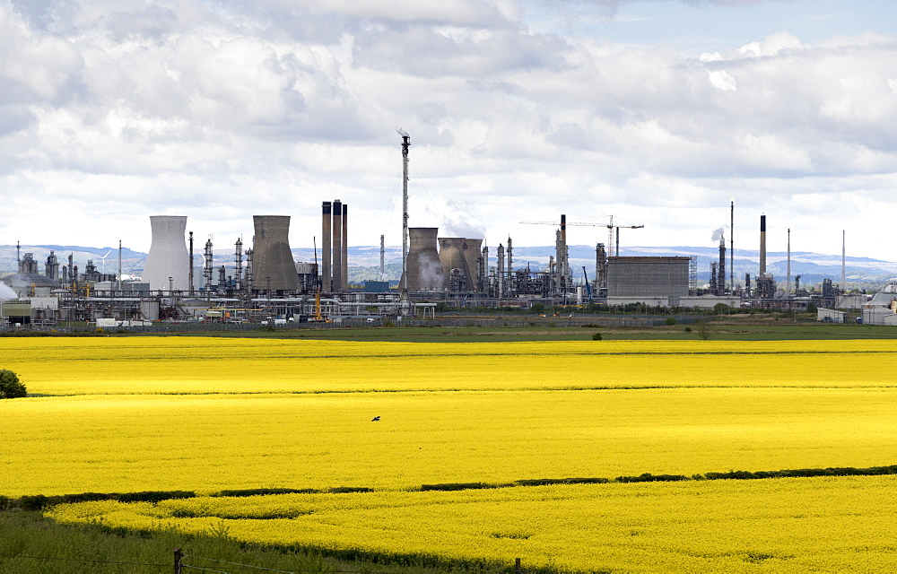 Grangemouth oil refinery and fields of rapeseed, Scotland