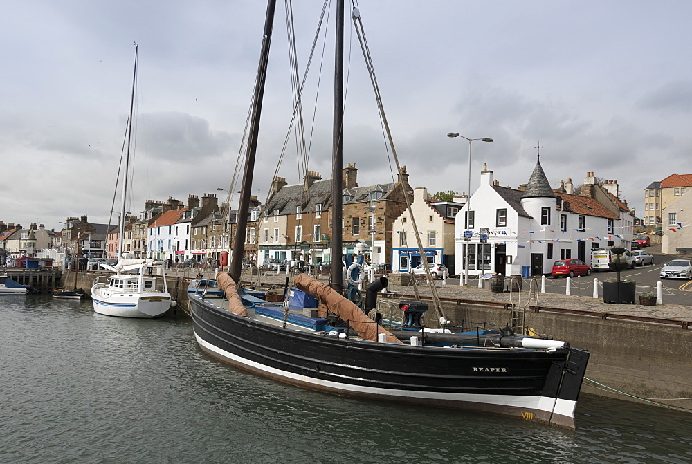 Sailing Herring Drifter moored in harbour, Anstruther, Fife Coast, Scotland, United Kingdom, Europe