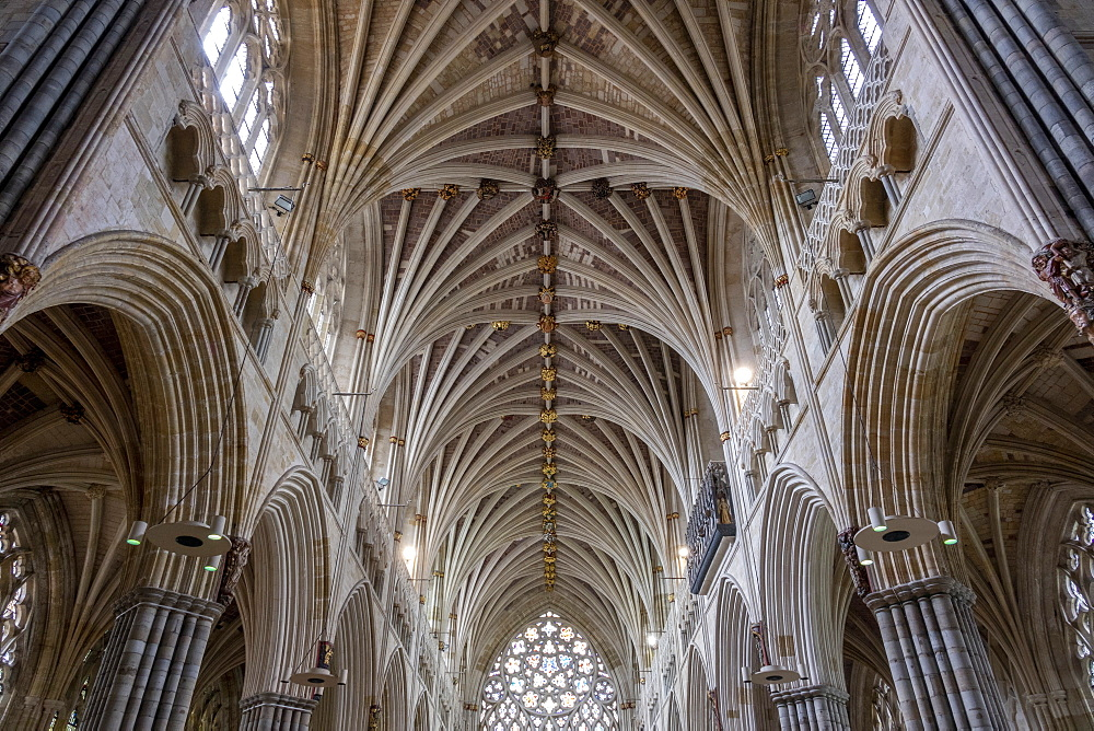 Nave vaulting looking West, Exeter Cathedral, Exeter, Devon, England, United Kingdom, Europe - 489-1758