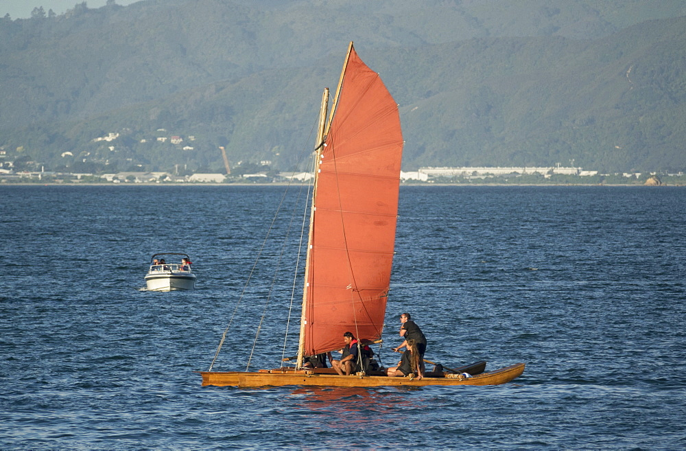 Maori Sailing Waka at 2018 Waka Odyssey, Wellington waterfront, New Zealand, Oceania - 489-1794