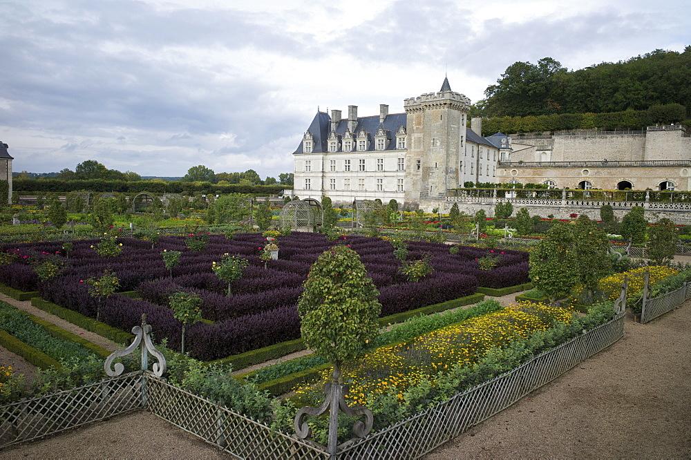 Gardens, Chateau de Villandry, UNESCO World Heritage Site, Indre-et-Loire, Touraine, Loire Valley, France, Europe