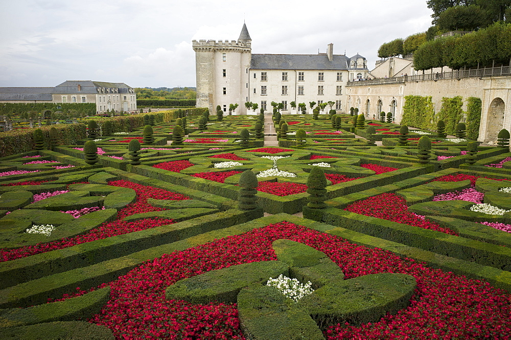 Gardens, Chateau de Villandry, UNESCO World Heritage Site, Indre-et-Loire, Touraine, Loire Valley, France, Europe