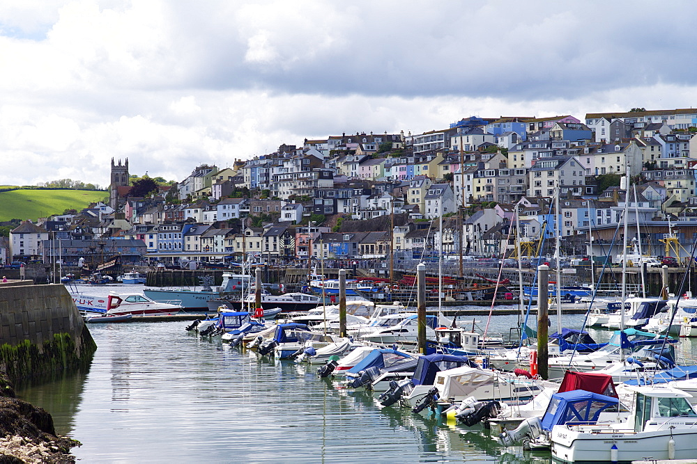Brixham harbour and marina, Devon, England, United Kingdom, Europe - 492-3549