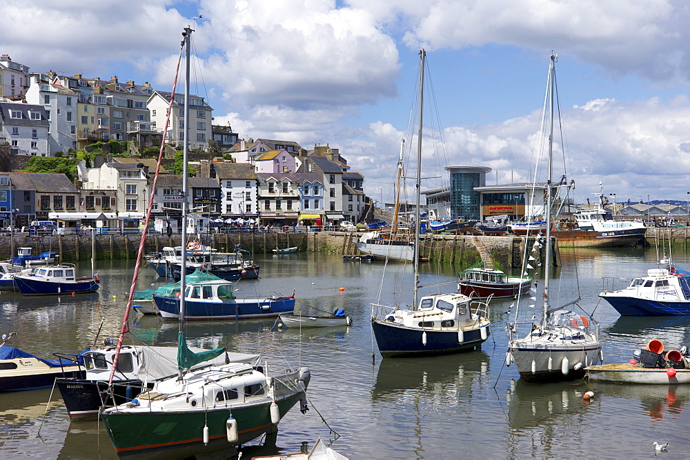 Brixham harbour, Devon, England, United Kingdom, Europe - 492-3550
