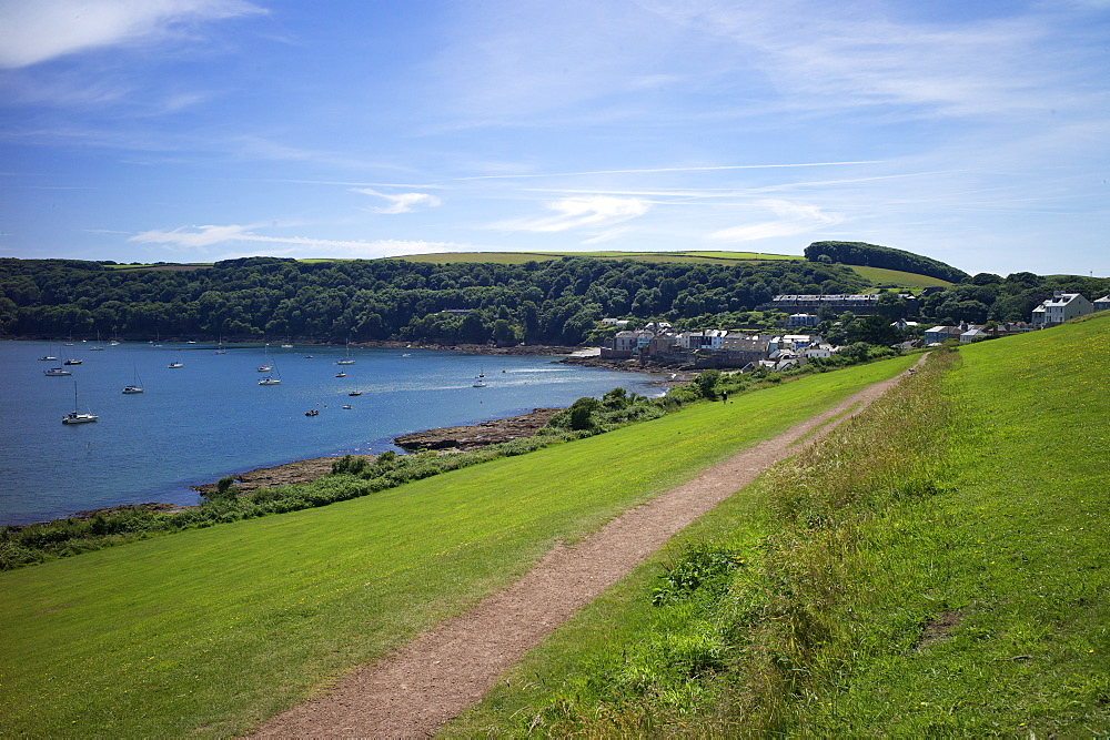 Coast path to Kingsand and Cawsand, Rame Peninsula, Cornwall, England, United Kingdon, Europe - 492-3586