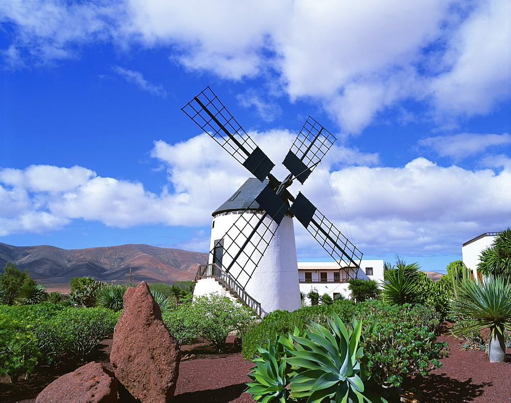 Traditional windmill near Antigua, Fuerteventura, Canary Islands, Spain, Europe - 505-3116