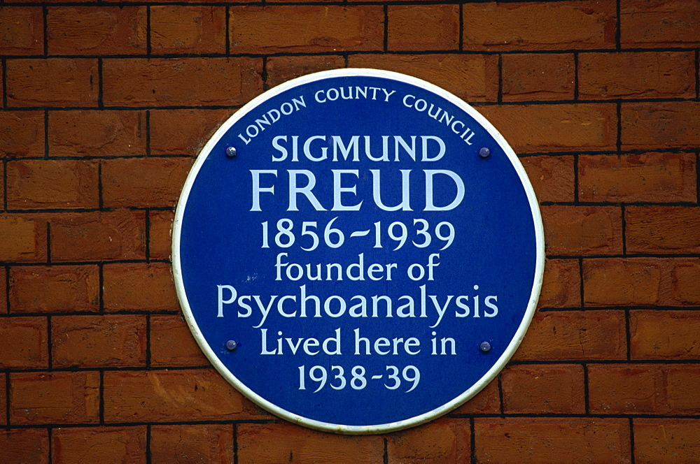 Blue plaque commemorating Sigmund Freud, London, England, United Kingdom, Europe - 508-36375