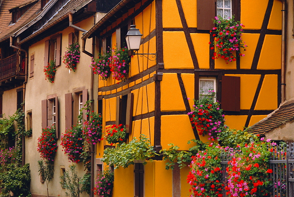 Turckheim, Alsace, France, Europe