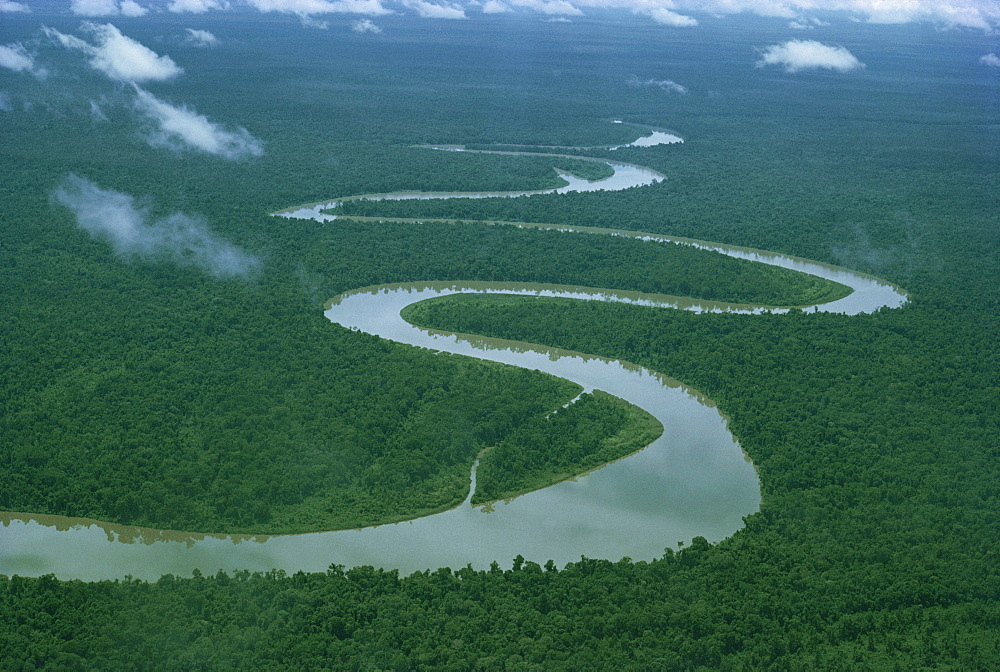 Meandering river, Irian Jaya, Indonesia, Southeast Asia, Asia - 54-4867