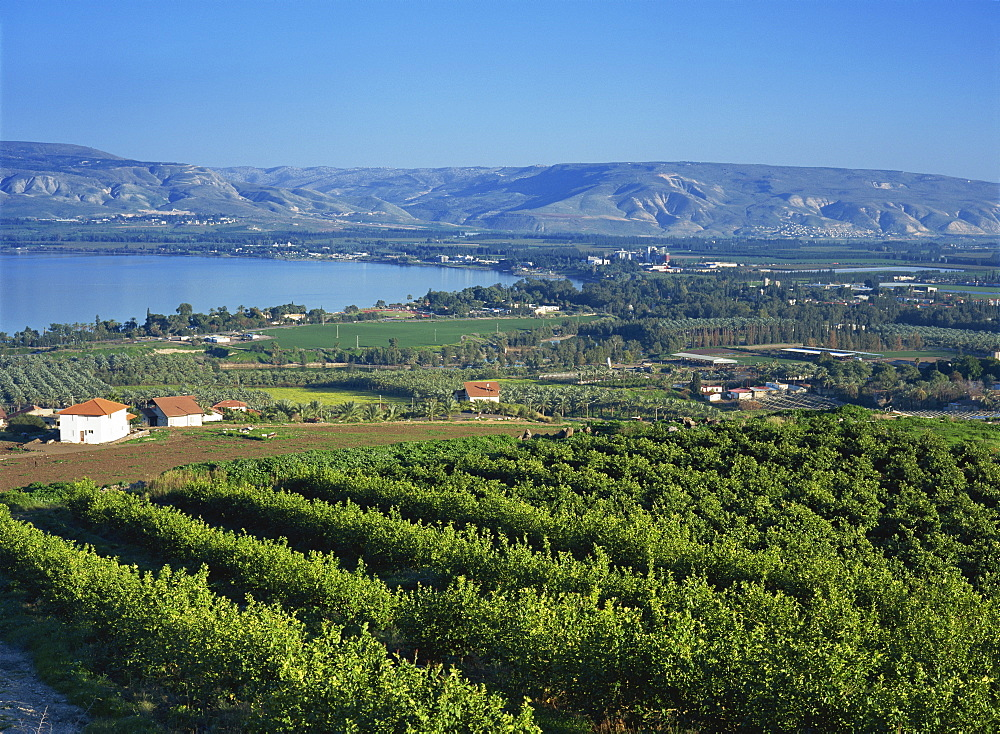 View of the Sea of Galilee, Zemakh area, Israel, Middle East