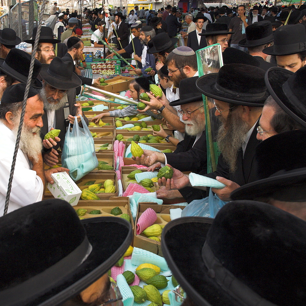 Crowd of Orthodox Jews buying the Etrog (citron) for the Lulav (ceremonial palm frond), Four Types Market, during Sukot (Festival of Booths), Jerusalem, Israel, Middle East