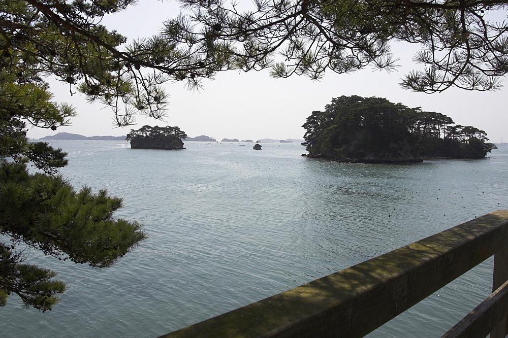 Matsushima Bay, Miyagi ken, Honshu, Japan, Asia