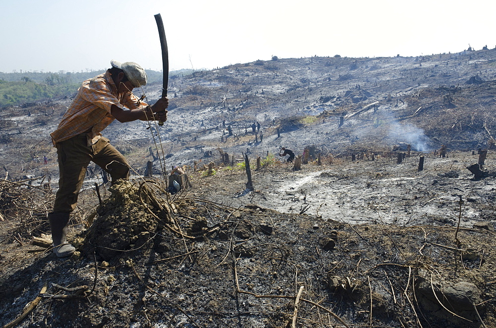 Man slashing vegetation on a burnt hill side after deforestation beside road from Pathein to Mawdin Sun, Irrawaddy Delta, Myanmar (Burma), Asia - 557-3346