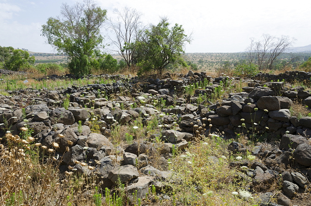 Archaeological site of the biblical city of Bethsaida, Sea of Galilee, Israel, Middle East - 557-3382