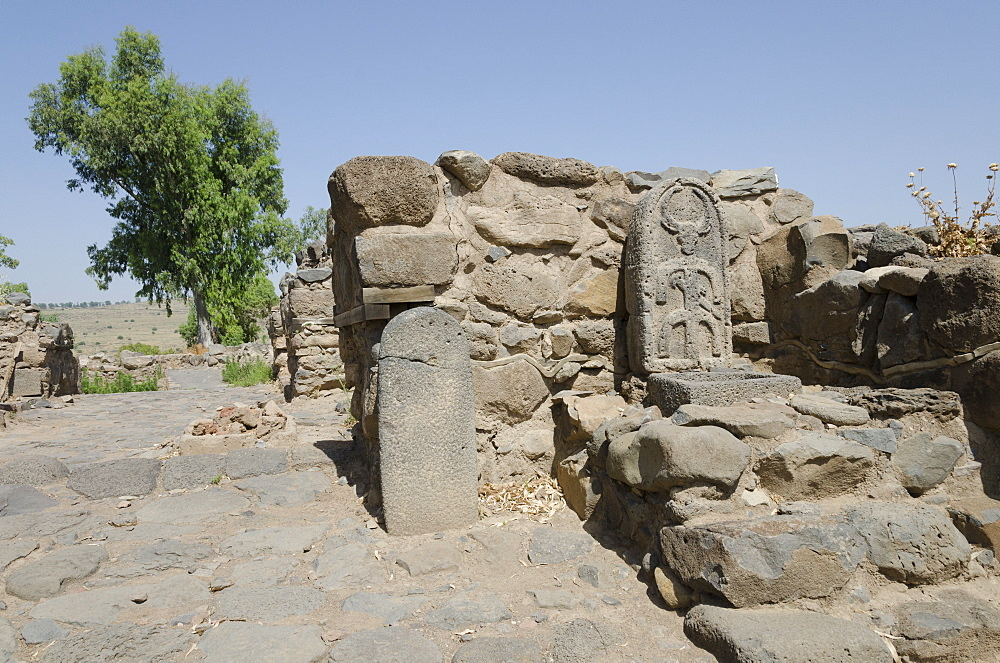 Archaeological site of the biblical city of Bethsaida, Sea of Galilee, Israel, Middle East - 557-3383