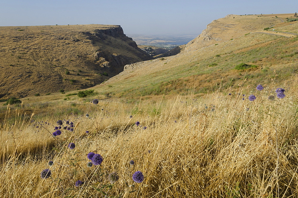 Mount Arbel above the Sea of Galilee, Israel, Middle East