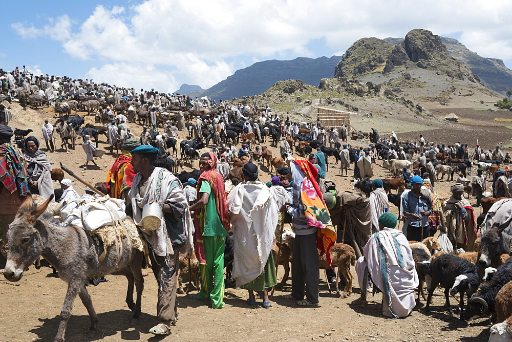 Open market on the treck to Abuna Yosef, Lalibela area, Northern Ethiopia, Africa