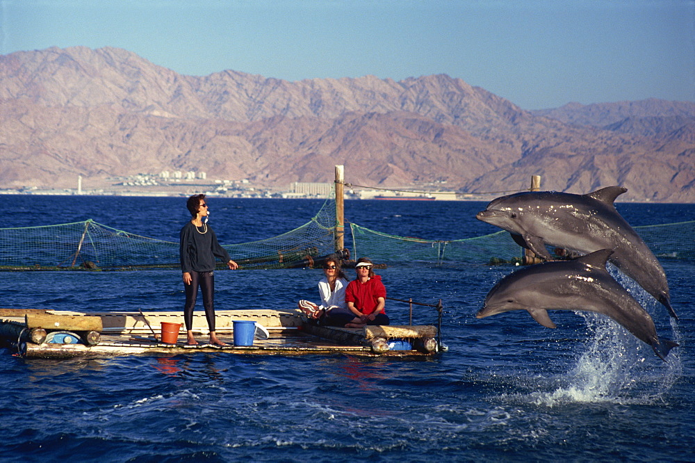 Woman blowing whistle to attract leaping dolphins for tourists to view at Dolphin Reef, Eilat, Israel, Middle East