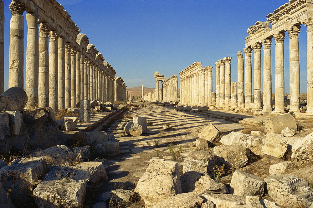 Cardo, Apamea, Syria, Middle East
