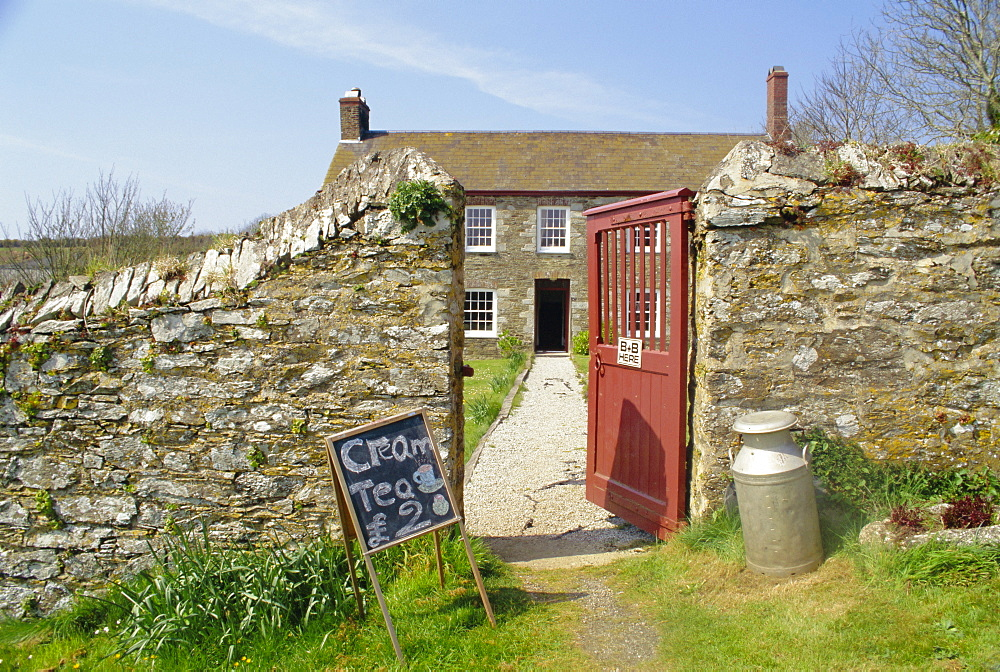 Cream teas sign outside Cornish farmhouse, near Fowey, Cornwall, England, UK, Europe