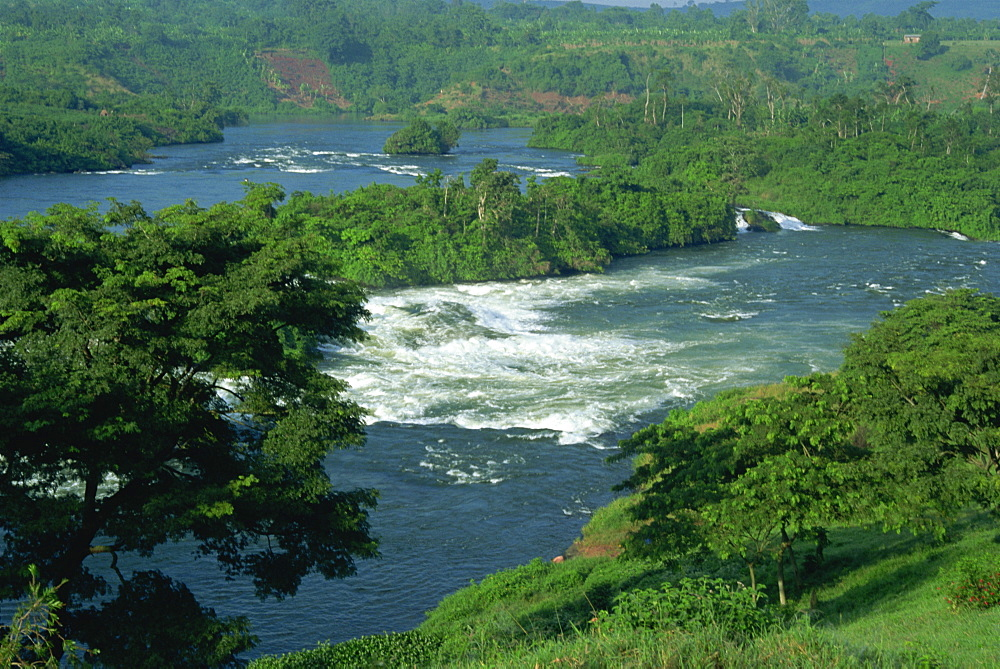Victoria Nile River through rainforest, Jinja Falls, near Kampala, Uganda, East Africa, Africa
