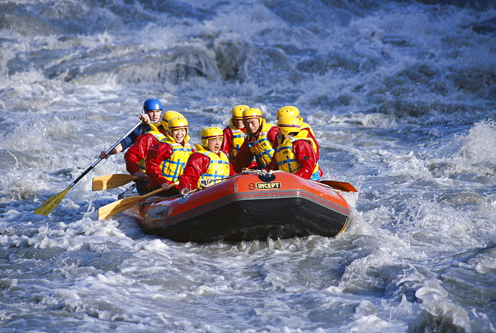 White water rafting, Queenstown, South Island, New Zealand, Pacific