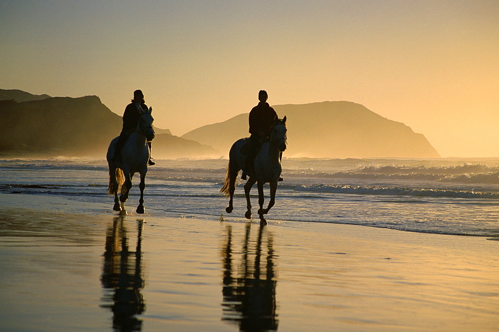 Horse riding on the beach at sunrise, Gisborne, East Coast, North Island, New Zealand, Pacific