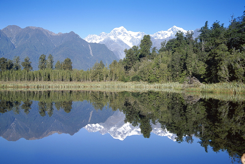 Perfect reflection on Lake Matheson, Fox Glacier, Westland, South Island, New Zealand, Pacific