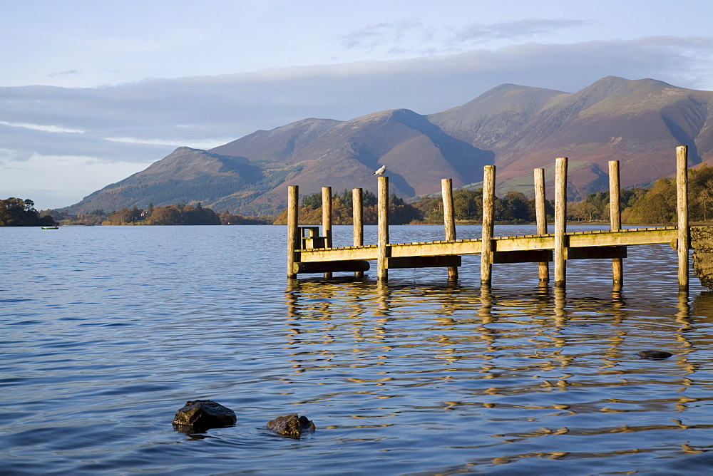 Wooden jetty at Barrow Bay landing on Derwent Water looking north to Skiddaw in autumn, Keswick, Lake District National Park, Cumbria, England, United Kingdom, Europe - 586-1357