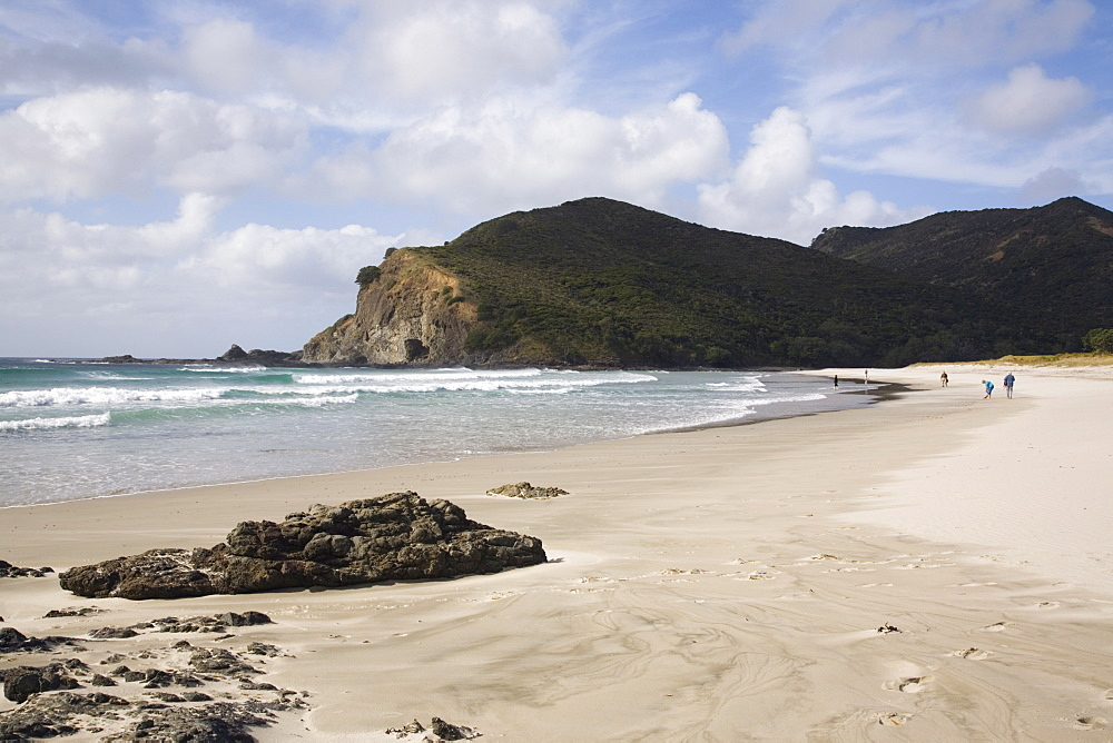 Tapotupotu Bay sandy beach with rolling waves and rocky headland on Pacific east coast, Aupori Peninsula, Northland, North Island, New Zealand, Pacific - 586-1471