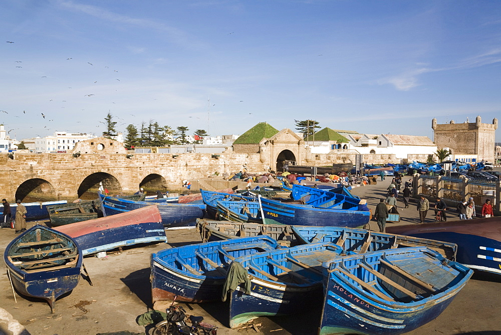 Blue boats in fishing port outside fortified town walls on west coast, Essaouira, Morocco, North Africa, Africa - 586-1494